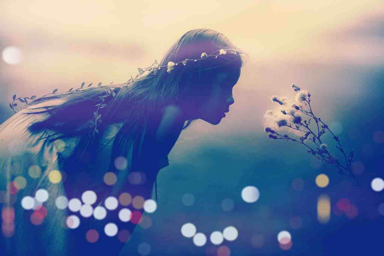 妖精茶会を夏至に開く。目に見えない不思議な世界と存在を心に留めなおす